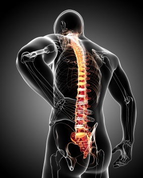 Anatomy of male back pain in black